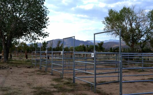 an evening view of corrals